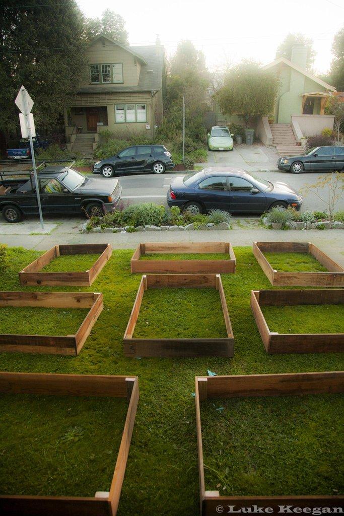 Lawn garden2