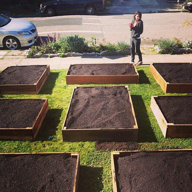Lawn garden3