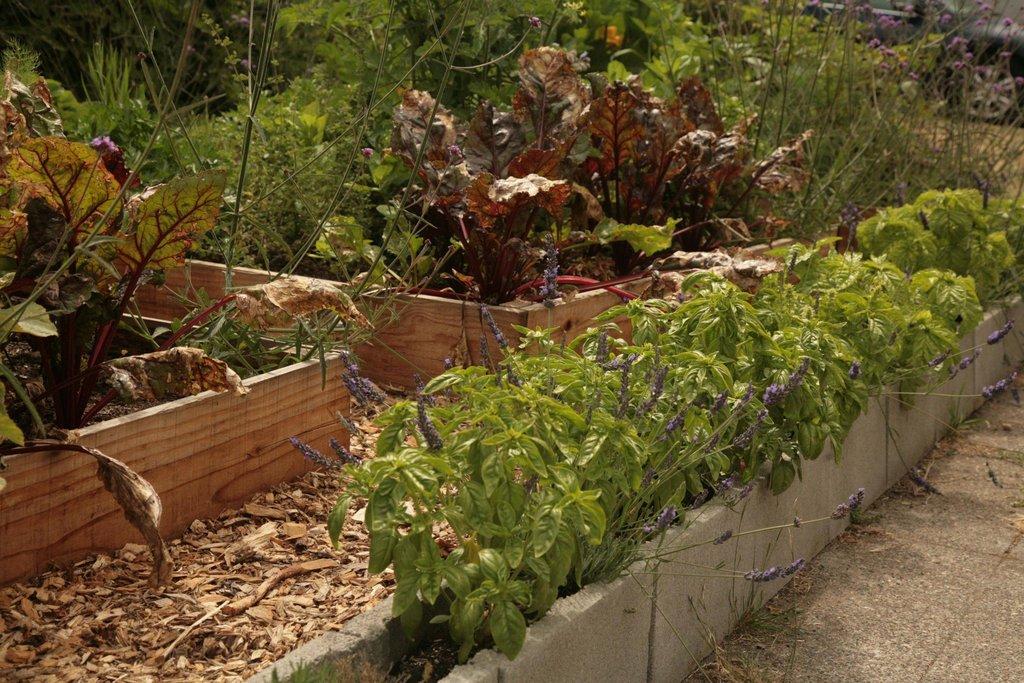 Lawn garden32