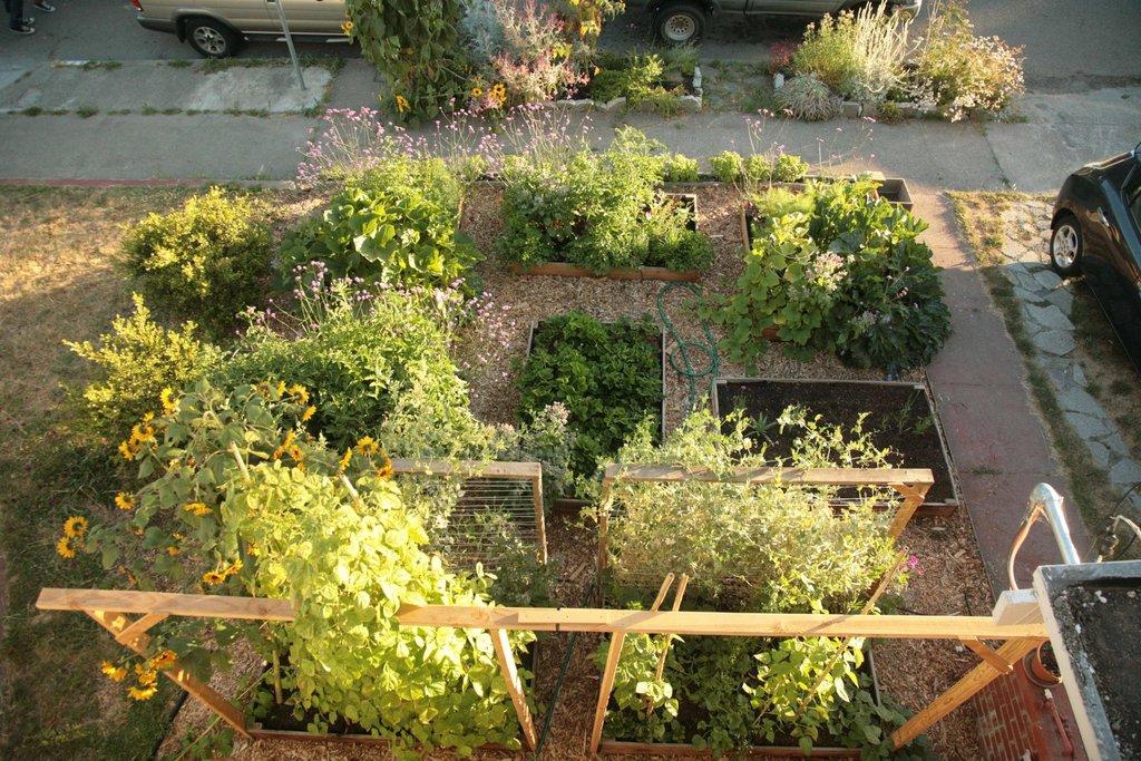 Lawn garden33
