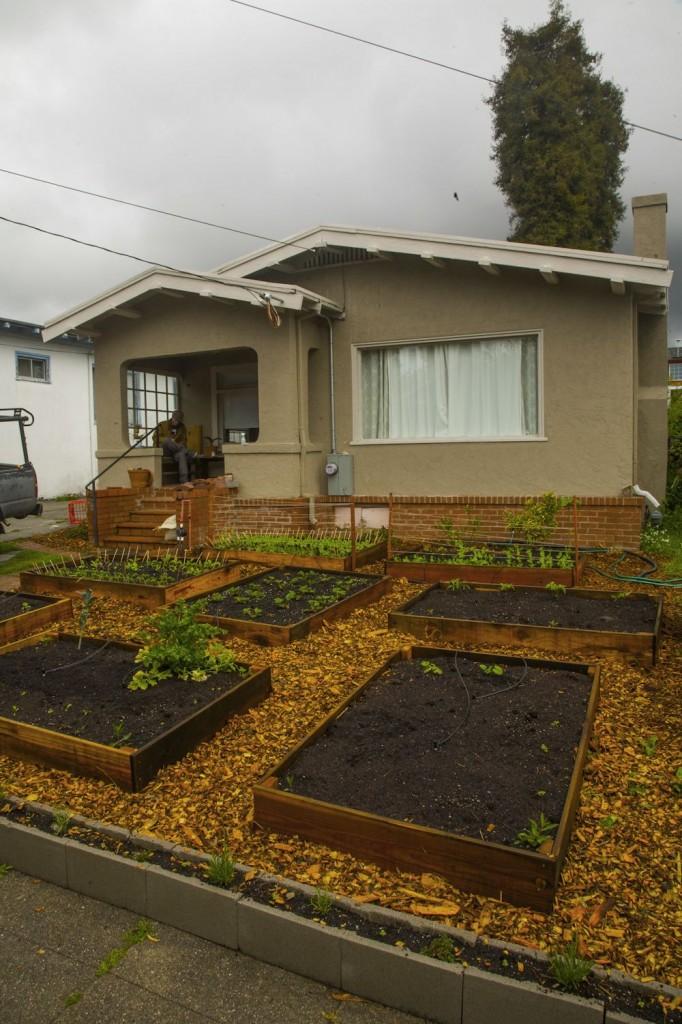 Lawn garden5