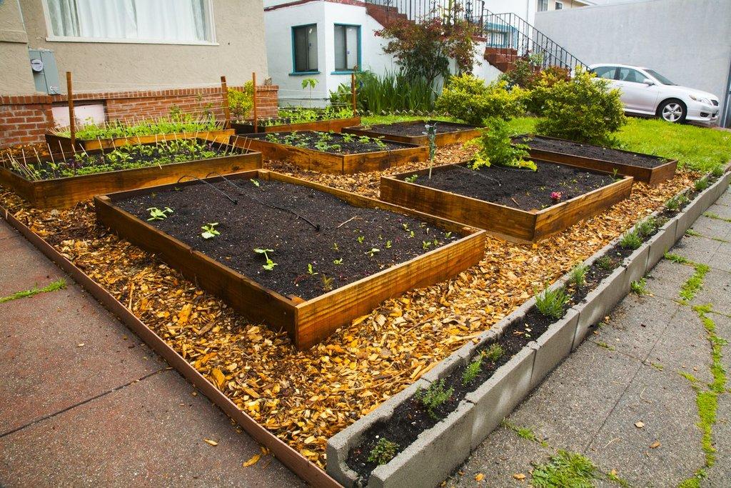 Lawn garden8