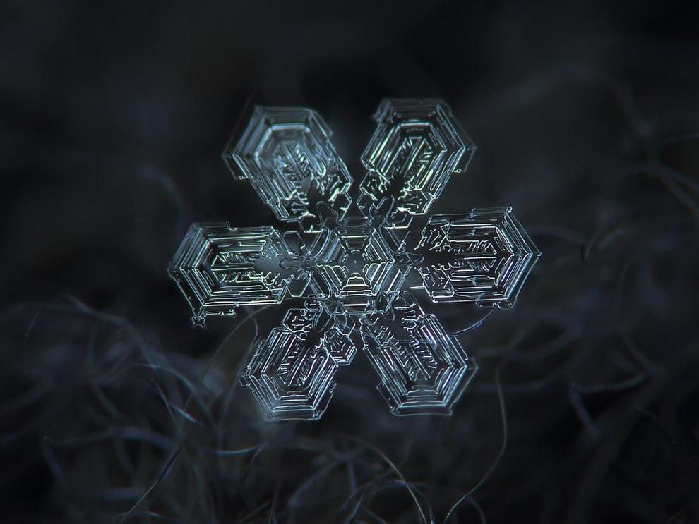 neige4