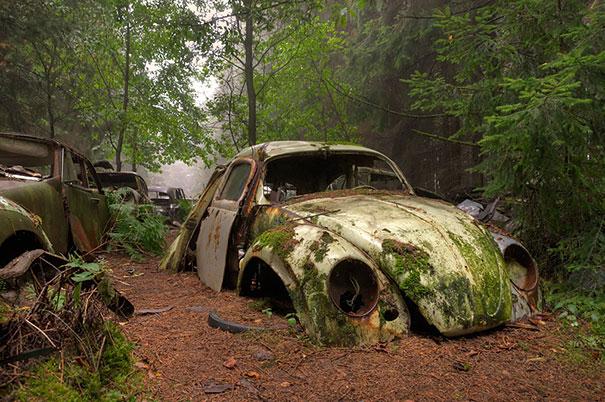 Chatillon car graveyard abandoned cars cemetery belgium 1