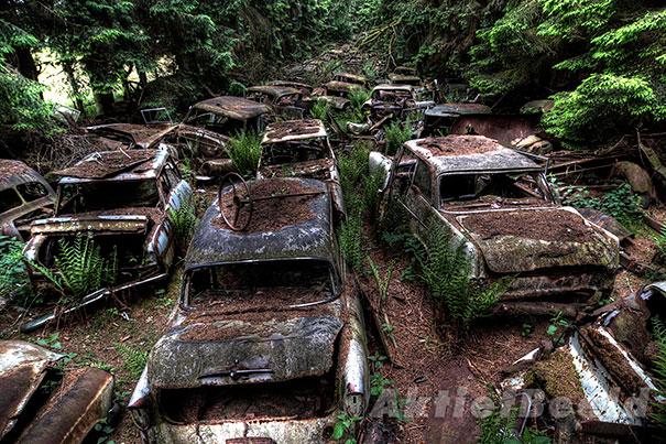 Chatillon car graveyard abandoned cars cemetery belgium 10