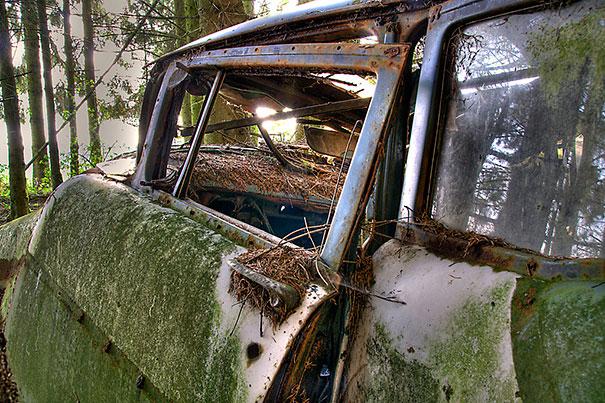 Chatillon car graveyard abandoned cars cemetery belgium 12