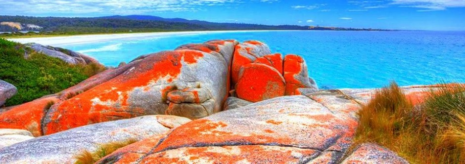 Binalong bay bay of fires tasmanie