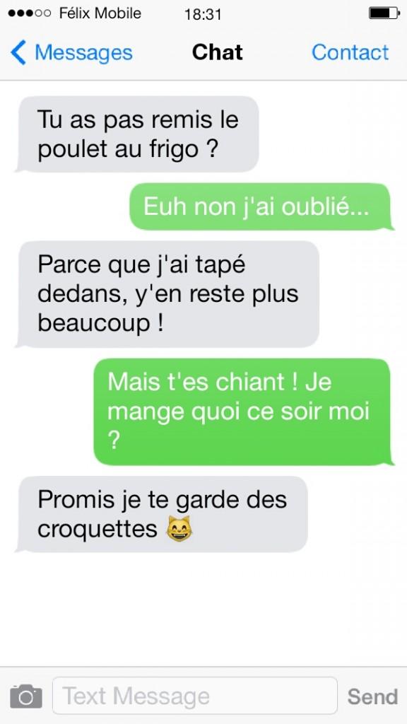 sms de chat1