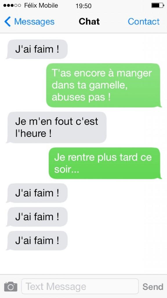 sms de chat4