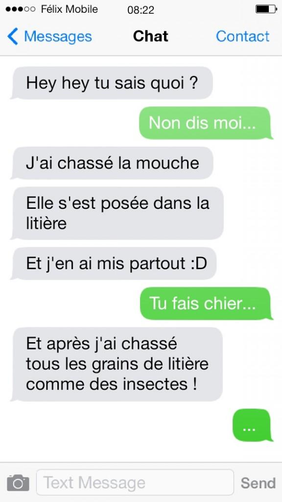 sms de chat7