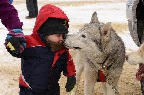 chien meilleur ami 19