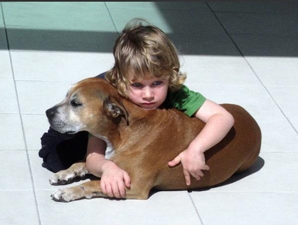 la raison de vivre d 39 un chien selon un enfant de 6 ans ou comment faire face une trag die de. Black Bedroom Furniture Sets. Home Design Ideas
