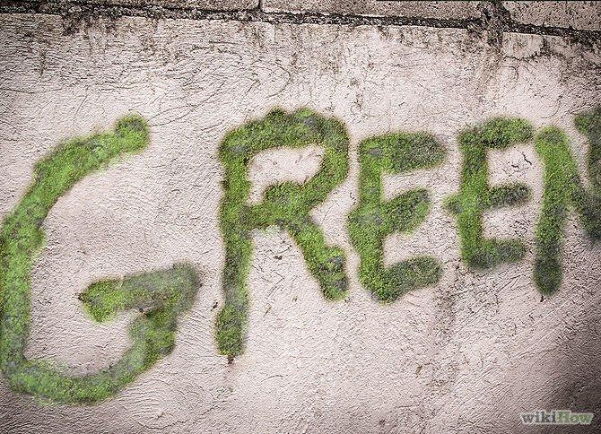 Graffiti mousse 9