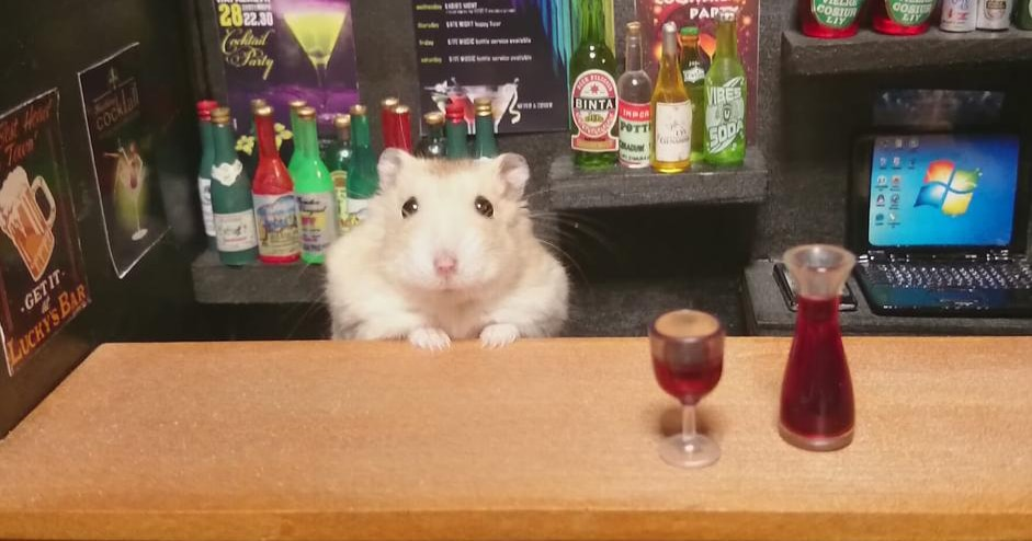Hamsters barmen fb