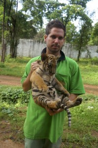 temple des tigres 2