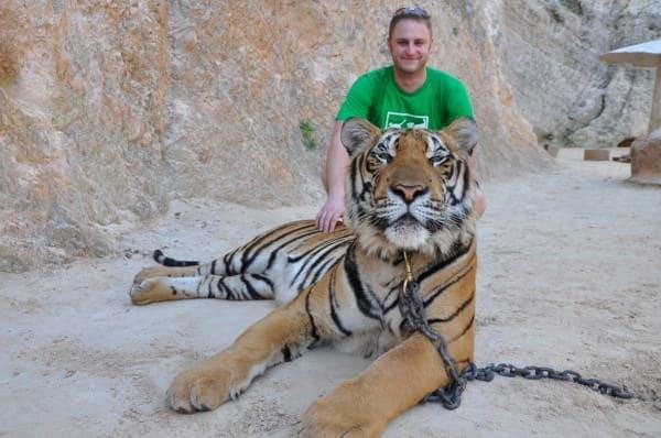 temple des tigres