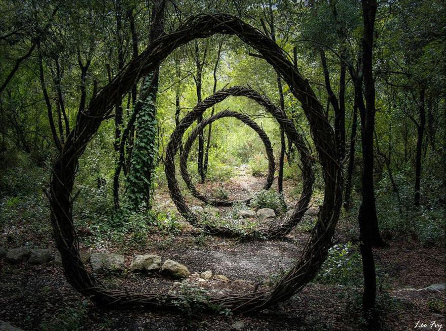 Art forestier 1
