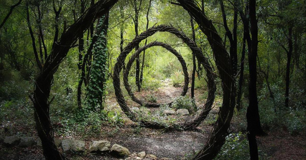 Art forestier fb