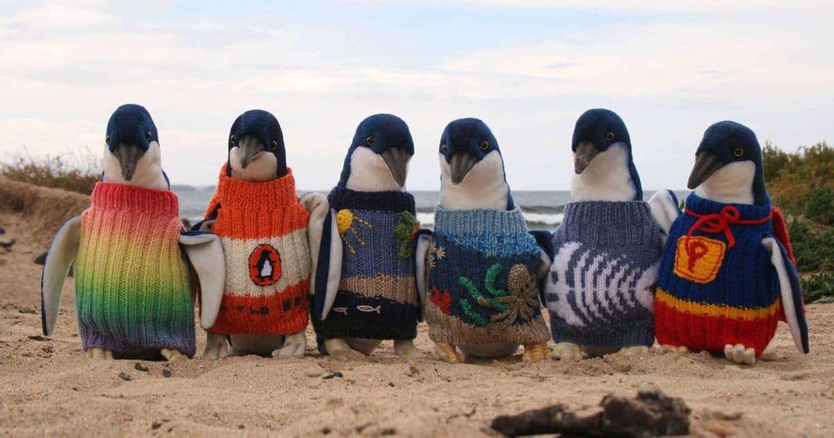 Pingouin fb