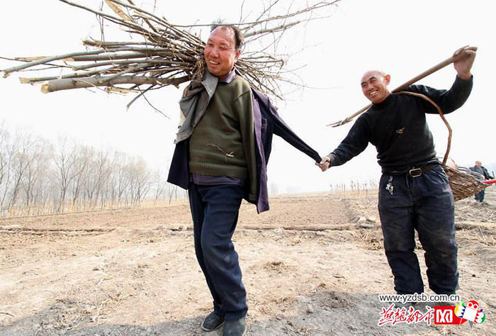Aveugle manchot plantent arbres 3