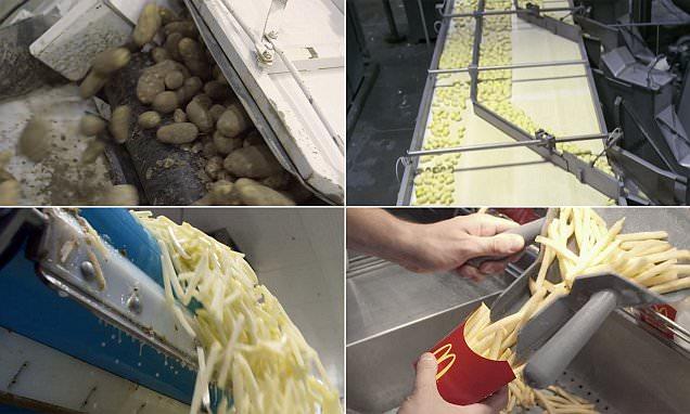 Frites mc do