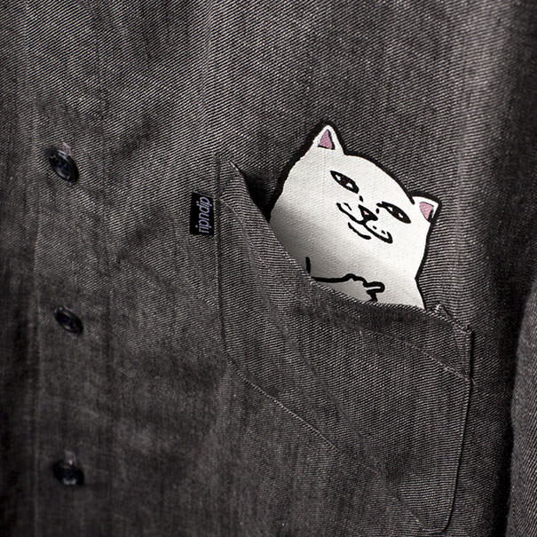T shirt poche chat 5