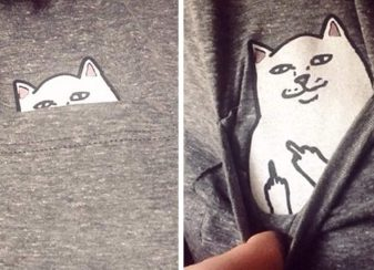 T shirt poche chat fb