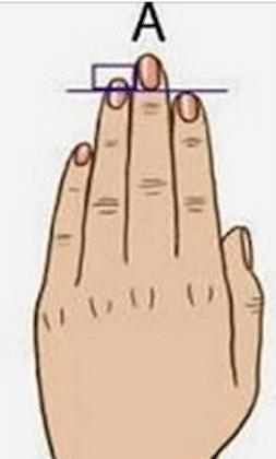 Longueur de vos doigts 2