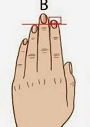 Longueur de vos doigts 3