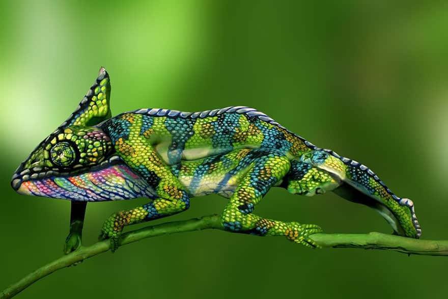 Incroyable! Ceci n'est pas un caméléon.