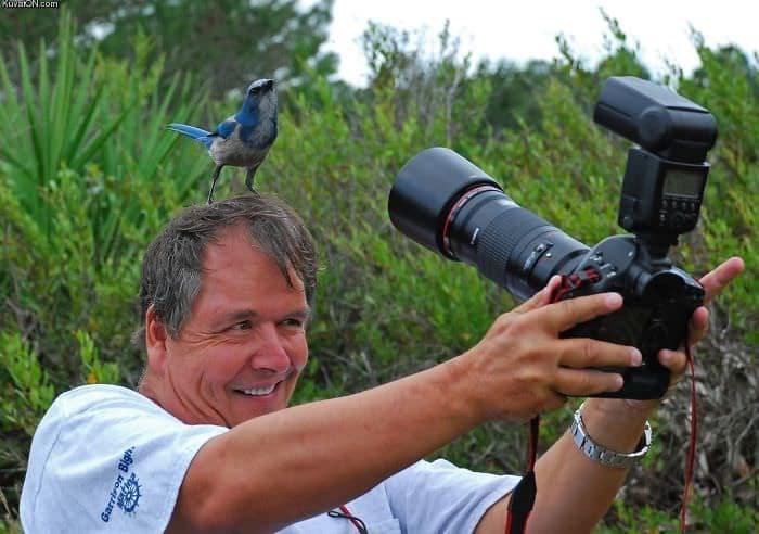 Photographes dejantes 10