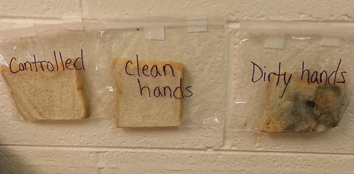 Que se passe-t-il lorsque vous mangez sans laver vos mains