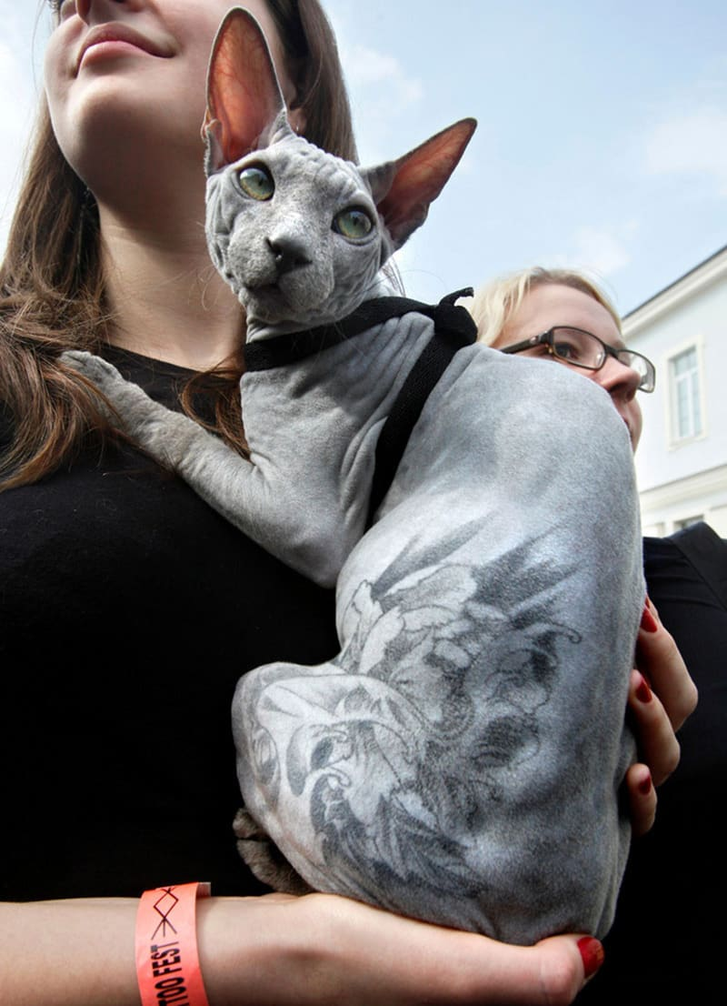 http://bridoz.com/wp-content/uploads/2015/06/dog-tatoo-8.jpg