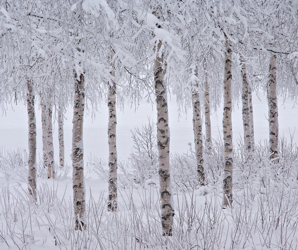 JON MARTIN/THE INTERNATIONAL LANDSCAPE PHOTOGRAPHER OF THE YEAR