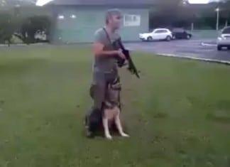 German shepherd stands with guard