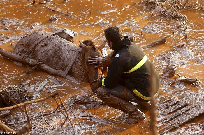 120915-la-pire-catastrophe-humanitaire-et-environnementale-10