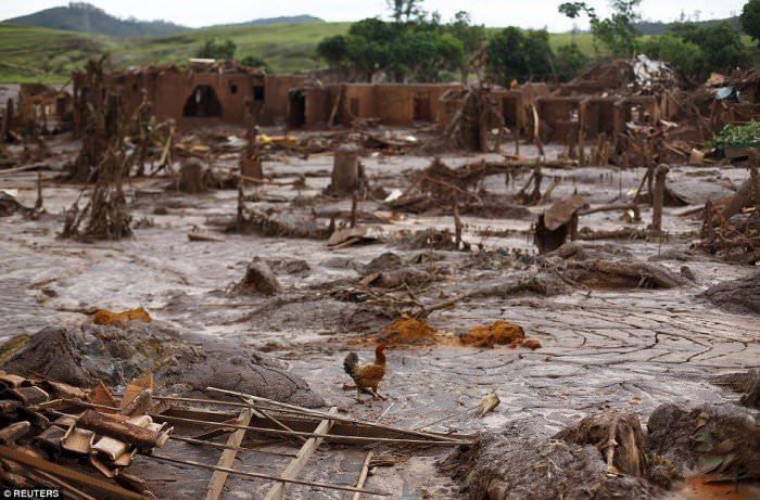 120915-la-pire-catastrophe-humanitaire-et-environnementale-7