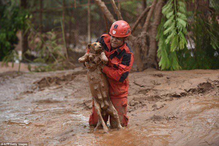 120915-la-pire-catastrophe-humanitaire-et-environnementale-9
