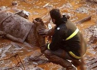 120915 la pire catastrophe humanitaire et environnementale featured