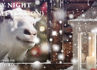 121415 goats singing christmas carols