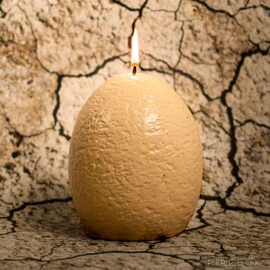 121615-Dinosaur-egg-candle-3