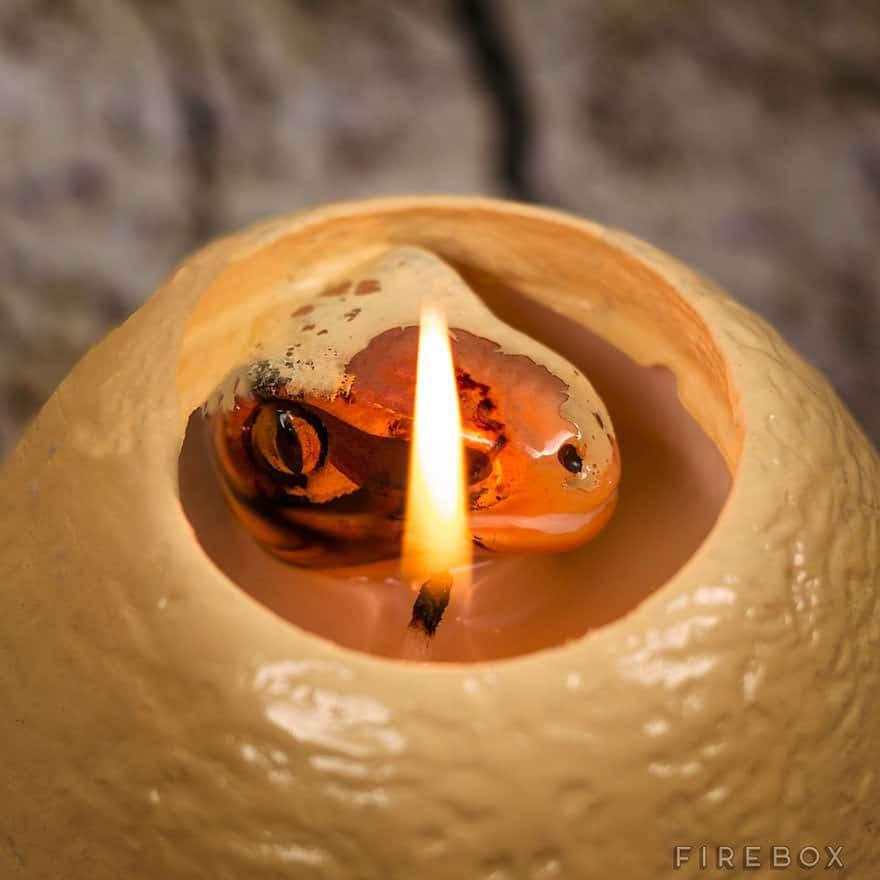 121615-Dinosaur-egg-candle-4