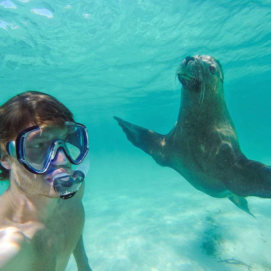 122415-mastering-the-art-of-animal-selfie-10