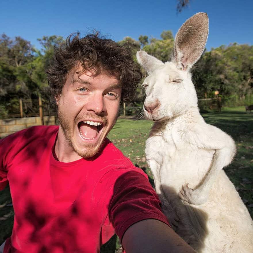 122415-mastering-the-art-of-animal-selfie-2