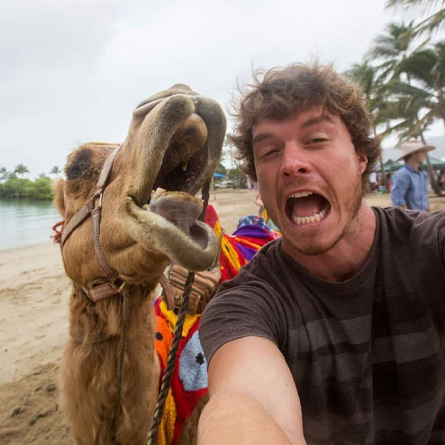 122415-mastering-the-art-of-animal-selfie-3