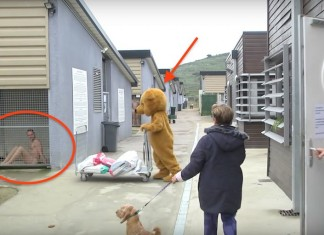 020116 animal shelter prank powerful message