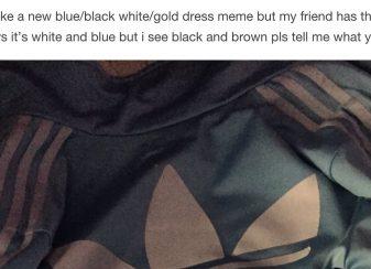 Veste couleur