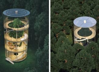 Oui cette maison minuscule est tr s sympa mais elle a un - Maison contemporaine construite autour dun arbre ...