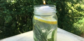 Un bocal en verre anti moustiques f