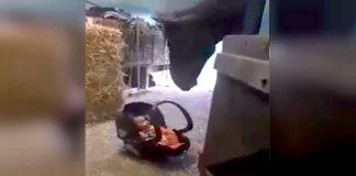 Cheval berce bebe fv2